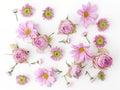 Wallpaper, Texture. Pink Flowe...