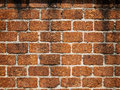 Walls made of laterite stone Stock Photography