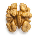 Walnut Royalty Free Stock Photo