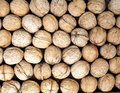 Walnut  background Stock Photo