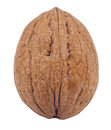 Walnut in close-up Royalty Free Stock Photo