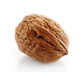 Walnut macro on a white background Royalty Free Stock Photography