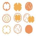 Walnut, nutshell icons set