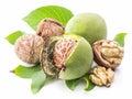 Walnut and walnut kernel. Royalty Free Stock Photo