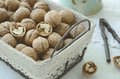 Walnut in wire basket whole french style Stock Image