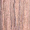 Walnut wood grain texture tree background Royalty Free Stock Image