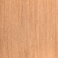 Walnut wood texture wooden interior natural rural tree background Royalty Free Stock Photo