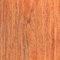 Walnut wooden texture wood grain natural rural tree background Stock Image
