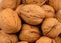 Walnuts 2 Royalty Free Stock Photos