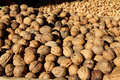 Walnuts and Almonds on a Greek Christmas Market stall Royalty Free Stock Photo