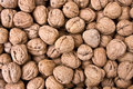 Walnuts background Royalty Free Stock Photos
