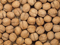 Walnuts.Background. Fotografia de Stock Royalty Free