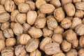 Walnuts background of with shell Royalty Free Stock Images
