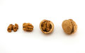 Walnuts brown shell nuts nut Royalty Free Stock Image