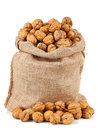 Walnuts in burlap bag Royalty Free Stock Photo