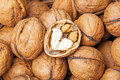 Walnuts fresh brown in detail Royalty Free Stock Image
