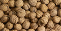 Walnuts a full frame walnut background Stock Images