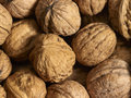 Walnuts a full frame walnut background Royalty Free Stock Images