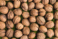 Walnuts group of un open Stock Image