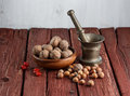 Walnuts and hazelnuts on rustic dark wood background Stock Photo