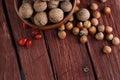 Walnuts and hazelnuts Royalty Free Stock Photo