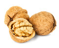 Walnuts isolated on the white background Stock Photos