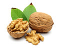 Walnuts and leaves Stock Photography
