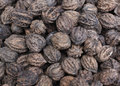 Walnuts many together repeat order clean and tidy Stock Images