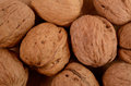 Walnuts texture of using as background Royalty Free Stock Photography