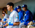 Wander franco lexington legends one of kc royals top prospects before the start of a game Royalty Free Stock Image
