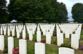 War graves rows of in normandy france Royalty Free Stock Photography
