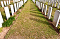 War graves rows of in normandy france Stock Image