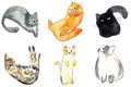Warercolor brush cats illustration set