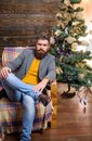 Warm and cozy christmas atmosphere at home. Home is best place. Man bearded hipster relax sit armchair near christmas Royalty Free Stock Photo