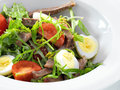 Warm delicious italian salad with beef tongue and arugula on a white round plate isolated on white Stock Images