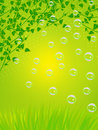 Warm evening and soap bubbles background Royalty Free Stock Photo