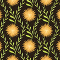 Warm flower pattern on brown background tender seamless dark Stock Photography