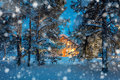 Warm house in night winter forest with snowfall Royalty Free Stock Photo