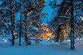 Warm house in snowy night winter forest Royalty Free Stock Photo