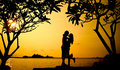 A warm loving hug on sunset Royalty Free Stock Photo