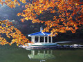 Warm splendid colorful forests autumn with summer house in korea Stock Photos