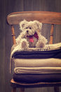 Warm winter blankets teddy bear sitting on on country house chair Royalty Free Stock Photography