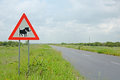 Warning of road sign - warthogs on the road Stock Photo