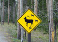 A warning sign for motorists at yellowstone national park Royalty Free Stock Photo