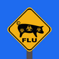 Warning swine flu sign Royalty Free Stock Images
