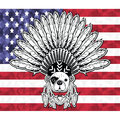 Warrior style French bulldog with tribal Headdress with plain feathers in white and black symbolizing native American people and I Royalty Free Stock Photo