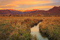 Wasatch autumn sunrise with a flowing stream. Royalty Free Stock Photo