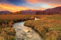 Wasatch fall sunrise with a flowing stream. Royalty Free Stock Photo