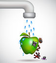 Washing green apple bacterium Royalty Free Stock Images
