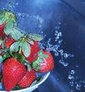 Washing Strawberries  Royalty Free Stock Photo